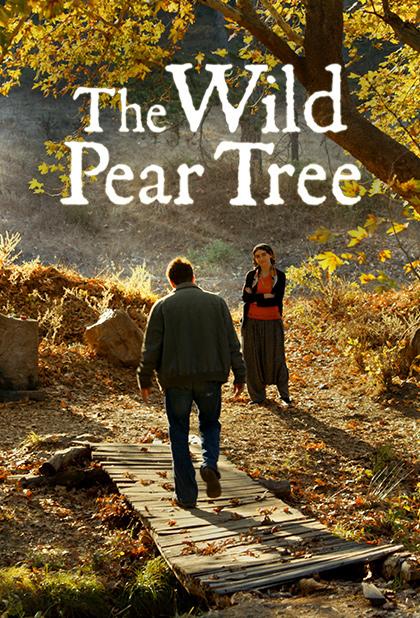 تماشای فیلم درخت گلابی وحشی
