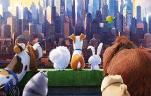 «زندگی مخفی حیوانات خانگی» یک کمدی دلگرمکننده