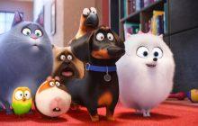 انیمیشن «زندگی پنهان حیوانات خانگی» از نگاه رولینگ استون