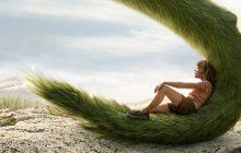 نقد فیلم «اژدهای پیت» از نگاه منتقد ورایتی
