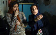 نقد فیلم «آباجان»: ستارهای به نام فاطمه معتمدآریا
