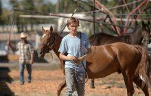جشنواره فیلم ونیز: «Lean On Pete»، فیلم زیبایی درباره دنیای مسابقات اسبدوانی