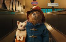 آنونس Paddington 2: این خرس دوستداشتنی شغلهای عجیبی را امتحان میکند!
