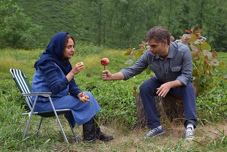 بررسی فیلم  «ناگهان درخت»: و ناگهان تکدرختی محتوم