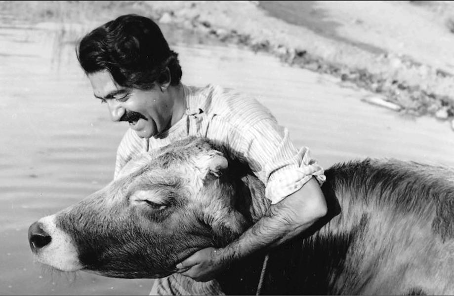 عزت الله انتظامی در فیلم گاو
