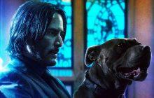 معرفی و نقد John Wick 3؛ حضور دوبارهٔ کیانو ریوز در فیلم اکشن شکوهمند جان ویک