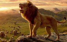 شیرشاه The Lion King؛ داستانی آشنا با تصاویری خیرهکننده