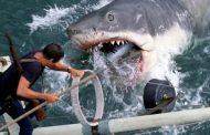 آرواره ها Jaws -  وقتی پای یک نابغه در میان باشد