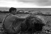 نقد و بررسی Bait - یکی از برترین فیلمهای بریتانیایی این دهه