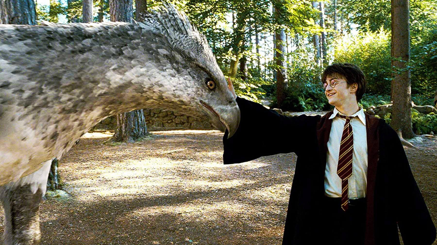 رتبه بندی تمام فیلم های هری پاتر Harry Potter و جانوران شگفتانگیز Fantastic Beasts