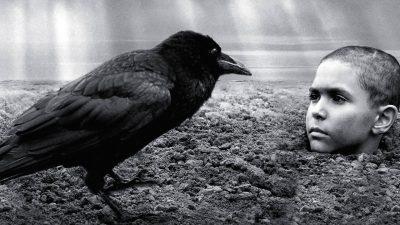 نقد و معرفی پرنده رنگین The Painted Bird – تجربه یک سفر جهنمی خشن و سوزناک